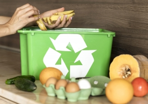 food recycling box